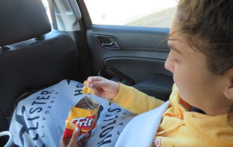 Necessities for a Thanksgiving road trip