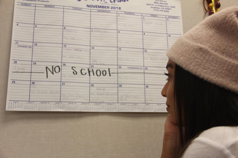 America Olmedo, Senior, looking at the calendar to see when Thanksgiving break is.