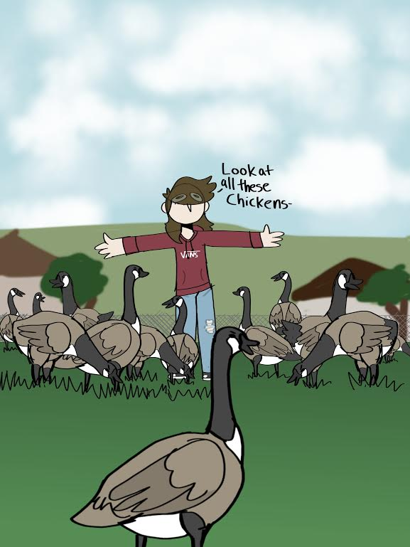 Pipers+Creek+Geese+Invade+the+Soccer+Fields