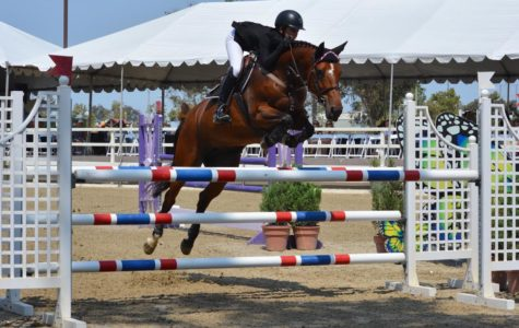 Freshman Equestrian Takes the Reins to Reach the Olympics