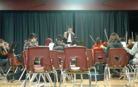 Feeling the Rhythm of the Strings: Behind the Esperanza Orchestras