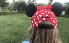 A Whole New Disney World