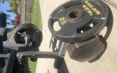 Weights that can be used for working out during the lock down.