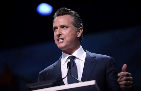 The pandemic has effectively exposed Gavin Newsom as a corrupt man who never should've been allowed to wield the power given to him when he was elected into his position.