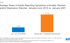 Results of the U.S. Census Bureau Household Survey taken in 2020 on mental health during the pandemic.